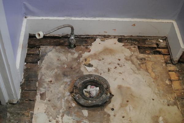 bathroom construction | burritos & bubbly