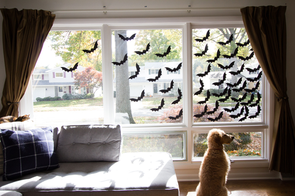 Feeling batty: Halloween window decorations!