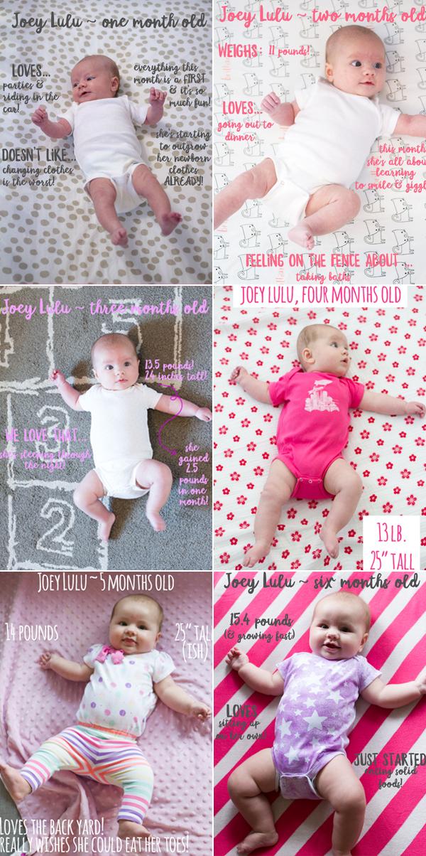 six months of Joey Lulu