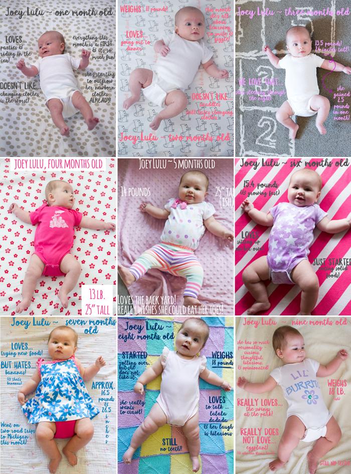 9 months of Joey Lulu